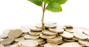 Ierarhia investitiilor straine in Romania